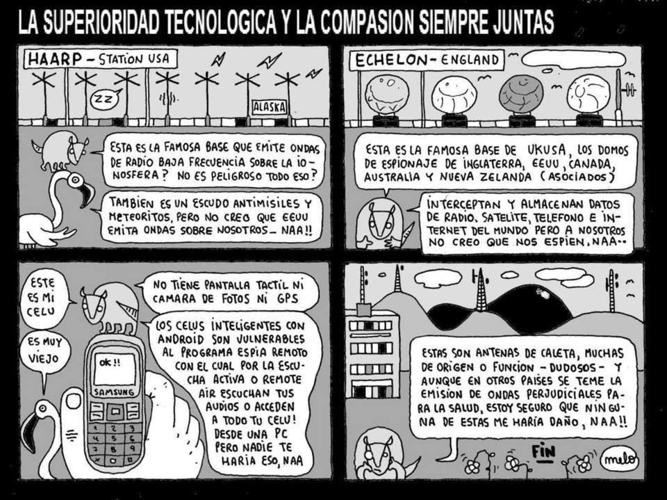 441 TECNOLOGIA 441
