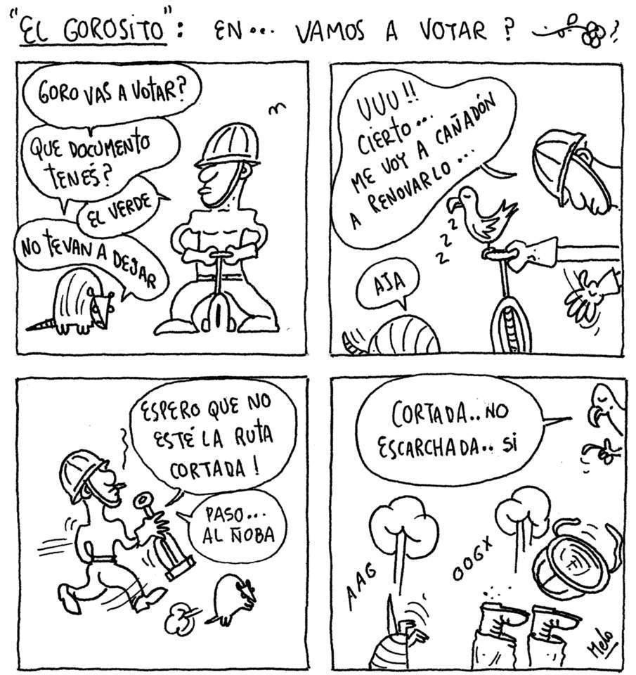 GORO VOTANDO 53